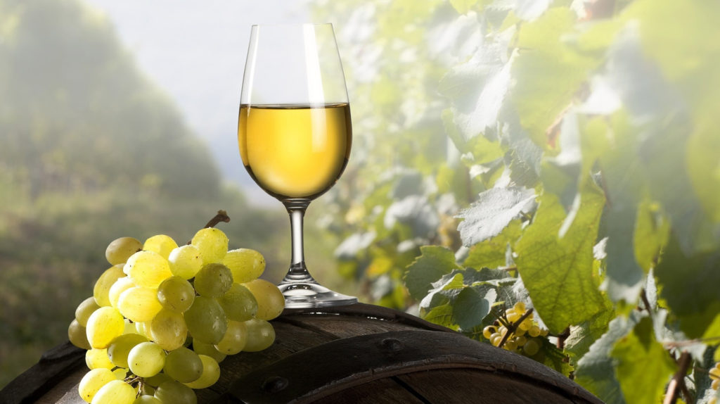 comprar vinoteca barata por internet