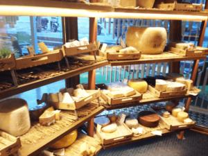 camaras de maduracion de quesos